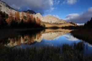 Paysages (automne, hiver)