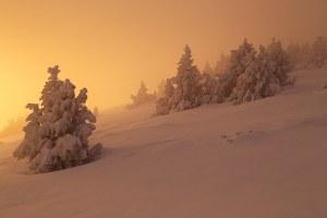 En hiver