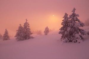 L'hiver au Ventoux
